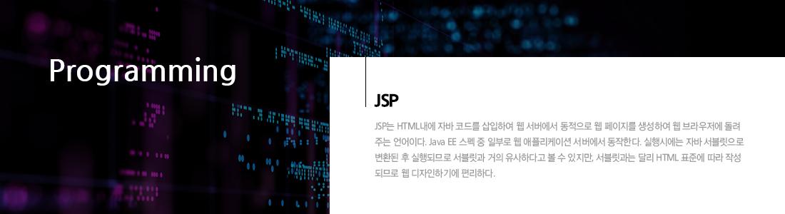 JSP Programming